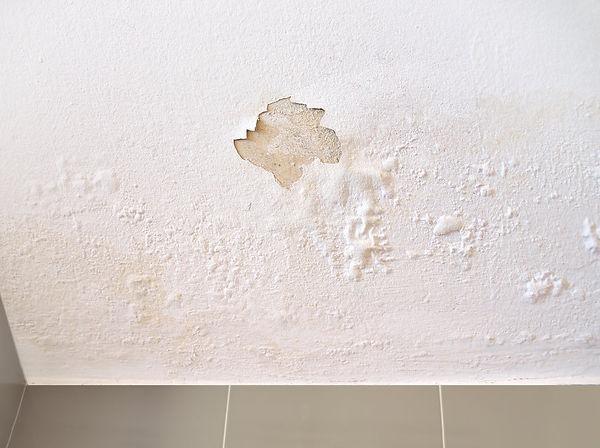 ceiling leak from rainwater