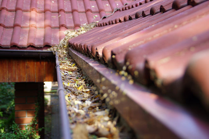 how-to-clean-roof-drain-gutters-clog-jpg