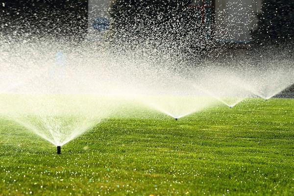 high water bill reasons sprinklers