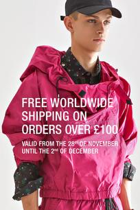 free worldwide shipping.jpg