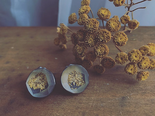Tansy Studs