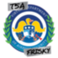 TSA Logo 3.png