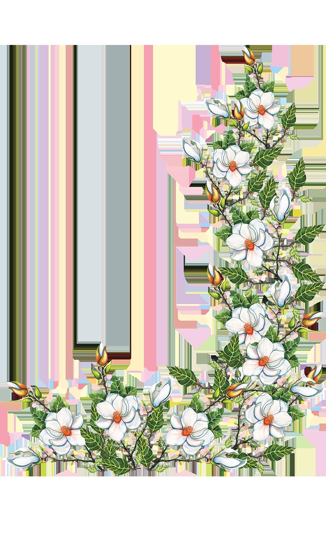 white magnolia Megan Campbell