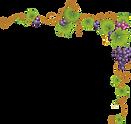 grape-border-png-6.png