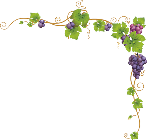 grape-border-png-6.png