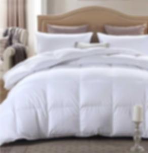 PenridgeGlobal Princess Collection Down Alternative Duvet and Pillows