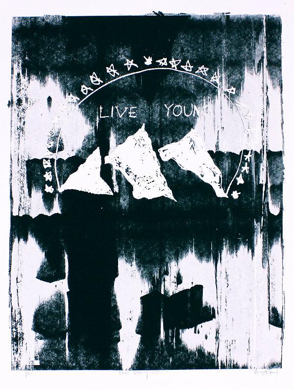 Live Young, screenprint, black and white, silkscreen art Gods blessing stars 23 Harrison Mills Brown