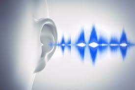背骨を揺らすことと耳鳴りの原因との関係が心体を回復へ導く!