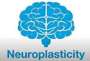 Neuroplasticity brain picture from YouTu