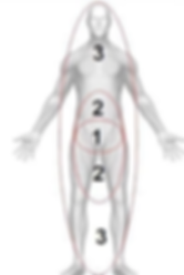 123 body.png