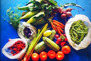 Worthington Farmers Market: September 3rd
