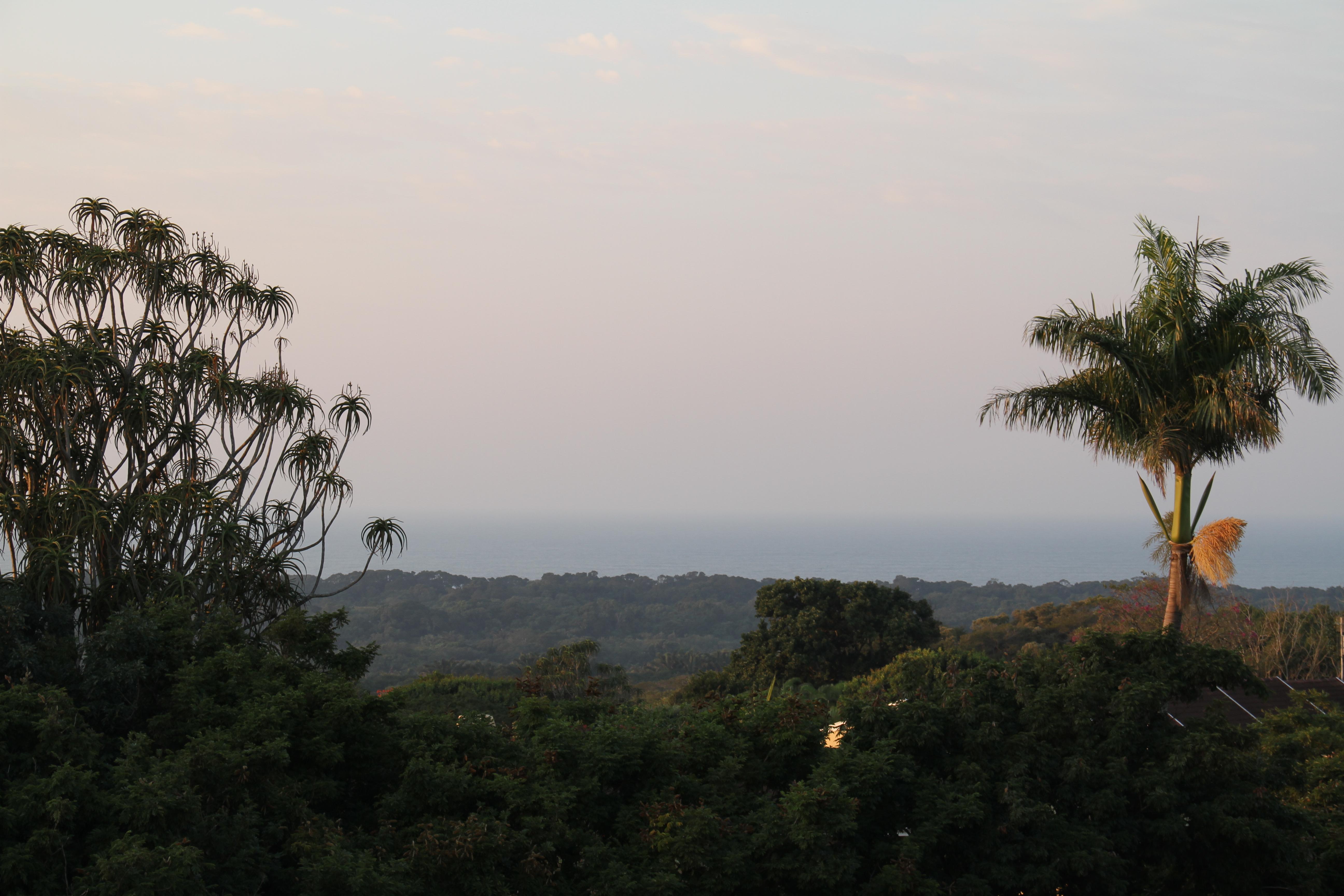 Tristen sea views