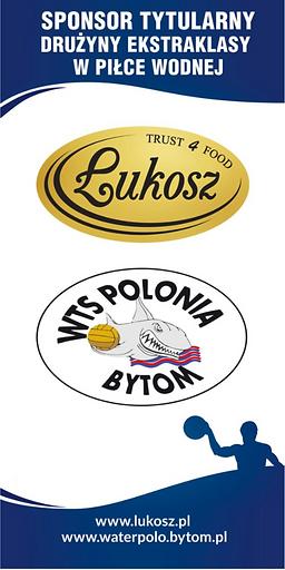 Sponsor tytularny drużyny ekstraklasy