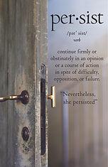 Persist Cover Door.jpg