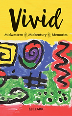 Vivid Cover.png