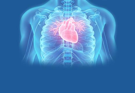Cardiology-Slide.png