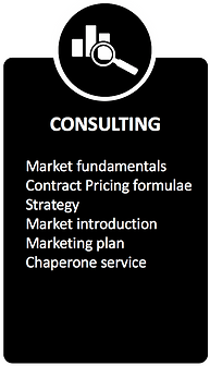 Africa consulting