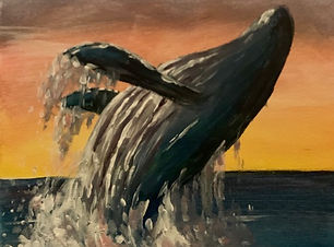 whale-backflip.jpg