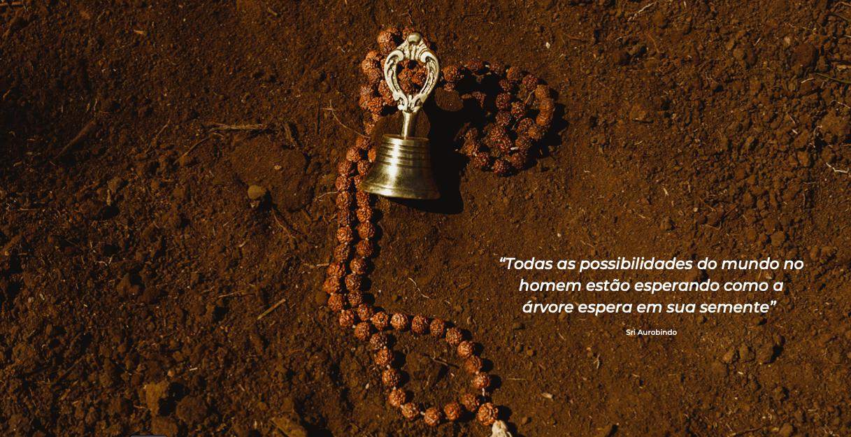 Captura_de_Tela_2020-11-07_às_15.40.43