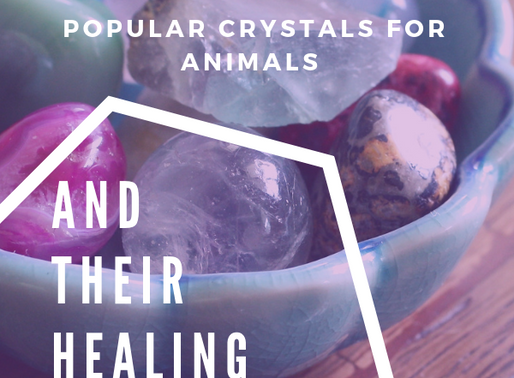 10 Popular Crystals for Pets