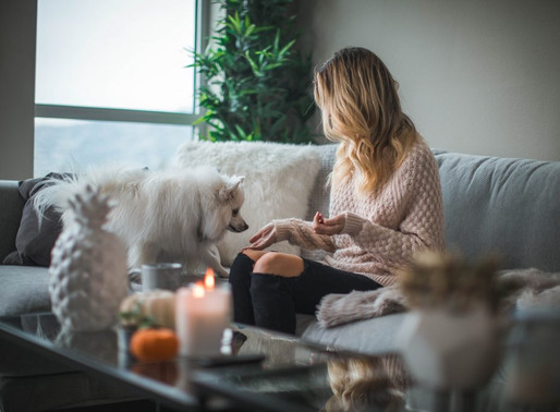 How toCreate Your Healing Space w Your Pet