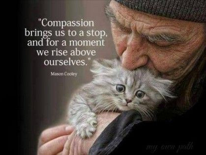 Everyone can tap into their compassion. Compassion heals all