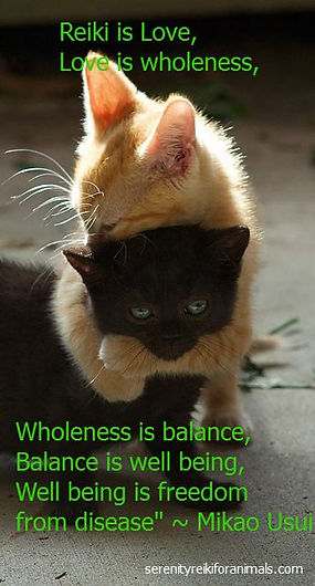 Reiki is Love, Love is wholeness, Wholeness is balance, Balance is well being Wellbein is Freedom from disease - Mikao Usui