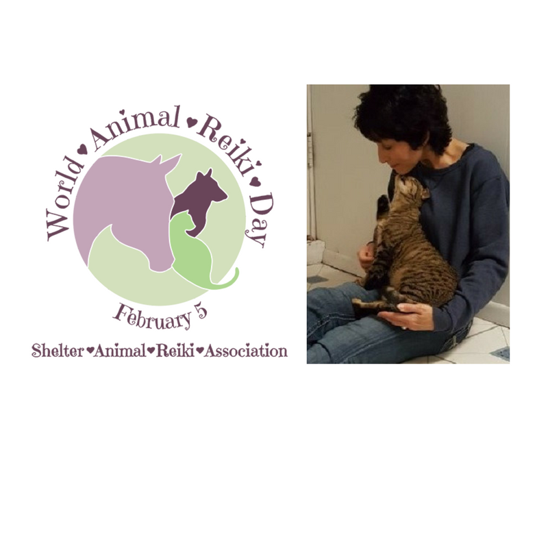 Shelter Animal Reiki Association - Selfhealing class