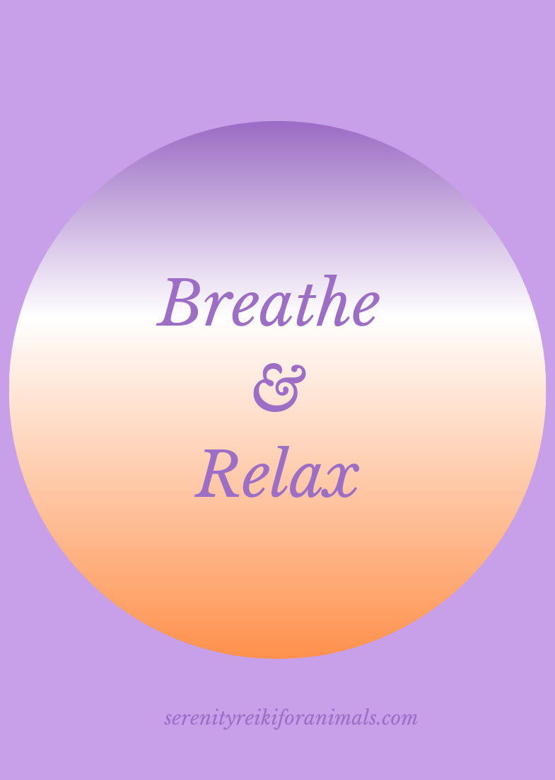 Taking a couple of minutes a day for some deep breathing is one of the healthiest easy things to do for your whole body, mind & spirit.