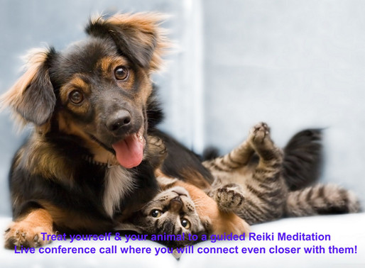Experience Meditation with Your Animal(s) on a Live Conference Call!