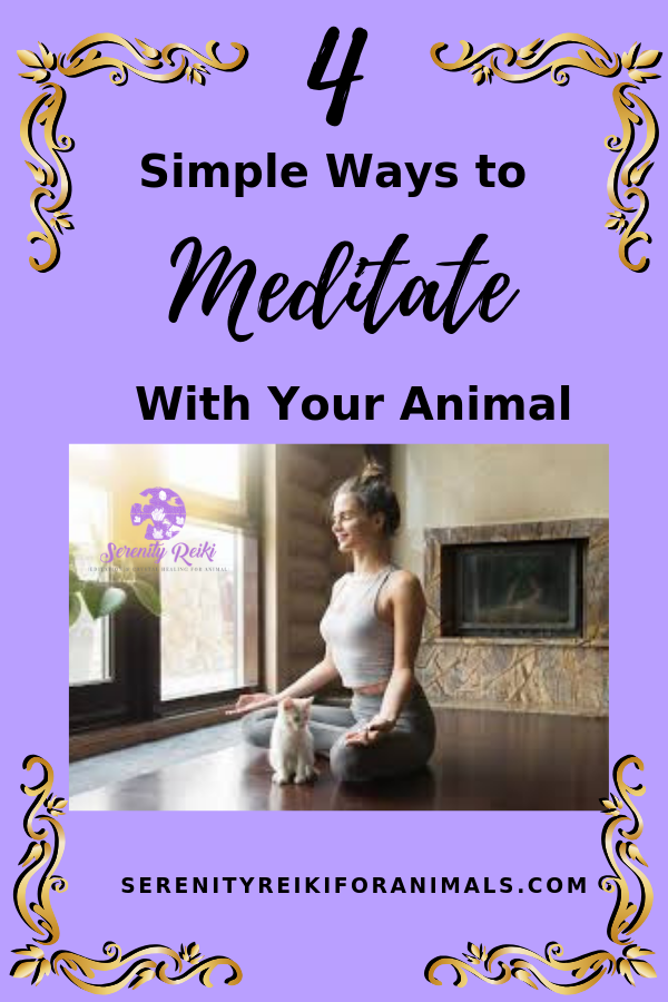 Learn Animal Reiki Meditation