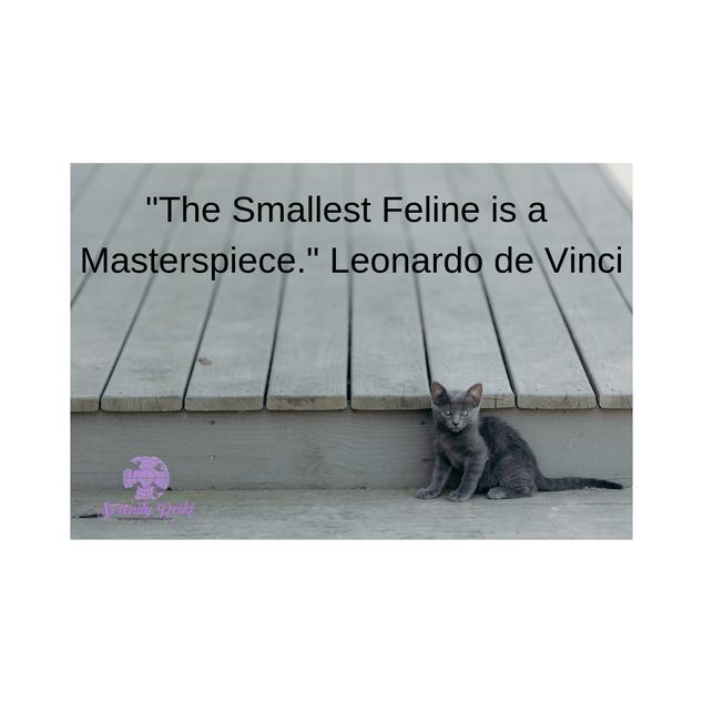 """The Smallest Feline is a Masterspiece."" Leonardo de Vinci"