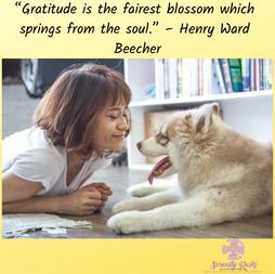 Gratitude...Pass it on