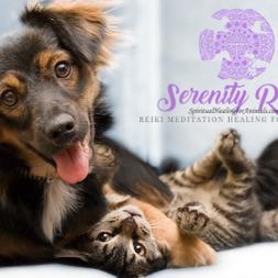 Learn Intro To Animal Reiki