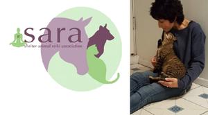 Self healing Class from Sheltered Animal Reiki Association