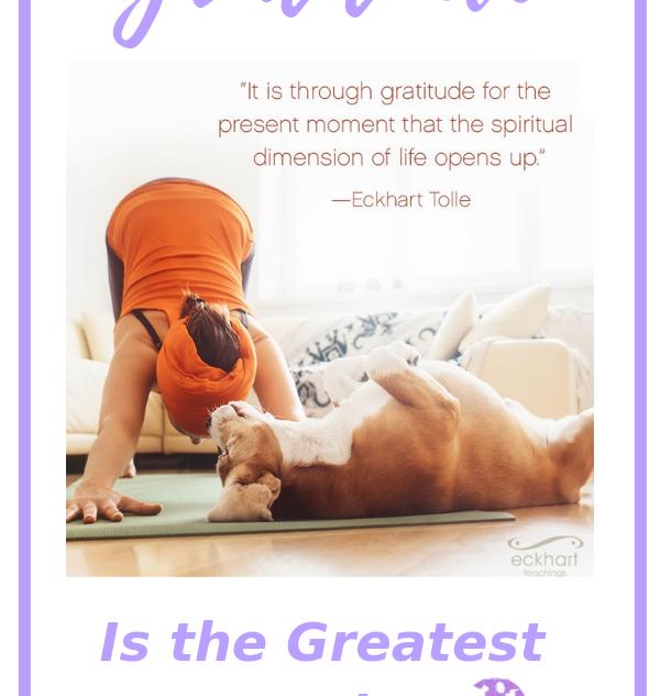 Gratitude is the greatest healer.png