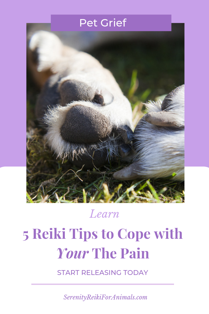 Reiki can help you learn how to release anger, anxiety, worry, fear and balance your whole system.