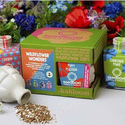 Kabloom Wildflower Wonders Gift Set