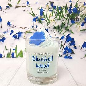 bluebell woods 3.jpg