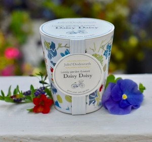 Daisy Grow Your Own Pot