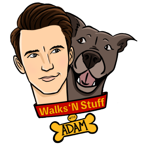 WALKNSTUFFlogo