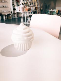 Large Cupcake Box