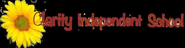 Clarity Main Web Logo.png