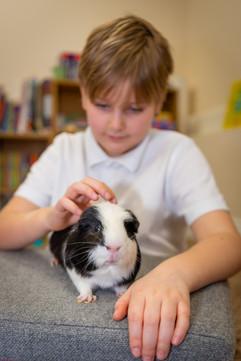 TC and guinea pig Theo.jpg