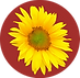 Sunflower Button.png