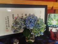 Jikiden Reiki certificate