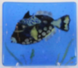 Picasso Trigger Fish Decorative Tile