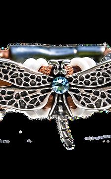 Fly Dragon Fly