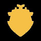 iconfinder_ship_452385.png