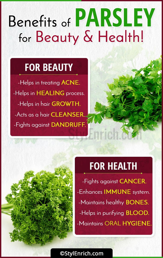 The Benefits of Parsley